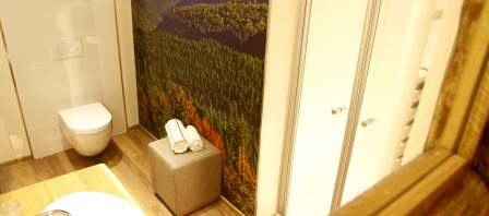 Wellness-room · Mountains 3